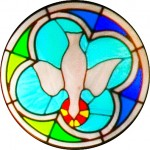 Rose Window - Dove