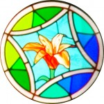 Rose Window - Lily