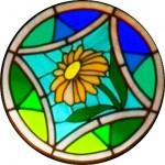 Rose Window - Daisy