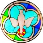 Rose Window - Dove