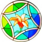 Rose Window - Lily